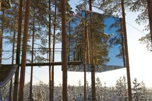 Отель в виде зеркального куба на дереве