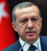 Турция готова вынести вопрос о вступлении в ЕС на референдум