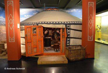 Монгольская юрта – главный экспонат музея Грасси