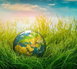 """""""Всем миром надо постараться сберечь созданное Творцом мироздание – для самих себя и потомков!"""""""