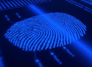 Уровень киберпреступности в России вырос в 20 раз за семь лет